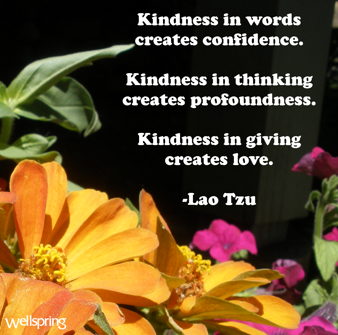 Thank You For The Kind Words Quotes: Random Acts Of Kindness