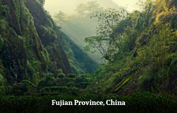 fujian-province-china